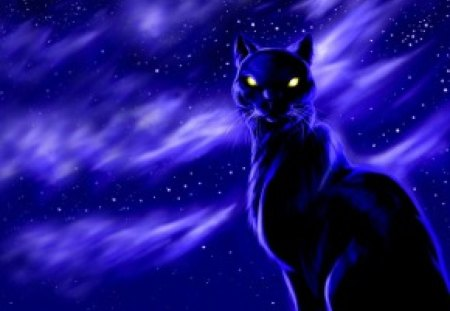 The Black Cat At Night 3d And Cg Abstract Background