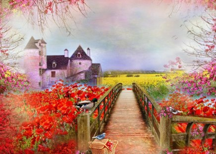 Spring of Poppies - grass, fields, birds, blooms, poppies, orange, animals, love four seasons, blossoms, duck, flowers, bridge, creative pre-made, nature, landscapes, beautiful, lovely, clouds, pretty, basket
