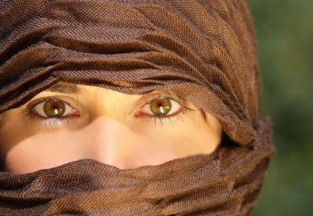 arab girl in hijab - beauty, brown, cute eyes, girl, trees