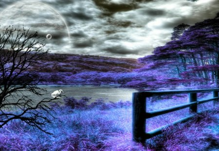 Edge of the Forest - fence, forest, fantasy, purple, edge