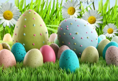 Easter Eggs and Daisies - easter eggs, daisies, grass, drops, spring, Easter, eggs