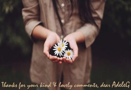 Thank you - hands, hold, daisies, adeleG, girl, ground, nature, thanks