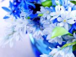 Bouquet of blue flowers