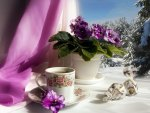 Cup of tea and purple flowers