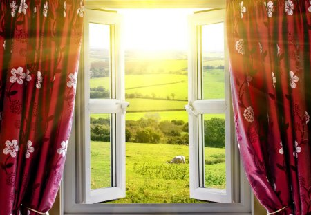 View from a window - pretty, glow, sunny, curtain, beautiful, animal, nice, open, light, lovely, window, view, sunlight, spring, freshness, rays, day, sunshine, nature, meadow, field