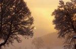 winter dawn on a farm