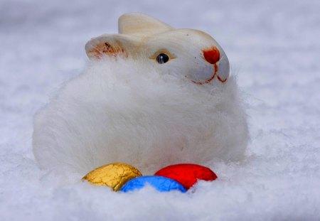 EASTER BUNNY - bunny, fur, easter, eggs, rabbit