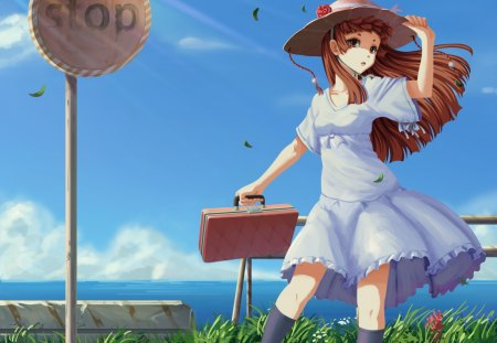 Windy Vacation Other Amp Anime Background Wallpapers On