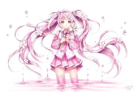 Sakura Miku Other Anime Background Wallpapers On Desktop Nexus Image 1415635