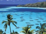 Gambier Islands French Polynesia South Pacific