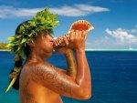 Tahitian Polynesian Man blows conch shell