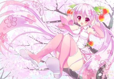 Sakura Miku Other Anime Background Wallpapers On Desktop Nexus Image 1416532