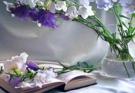 Word of God - god, read, still life, bible, book, flower