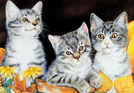 Kitty Kats (Illustrated) - cute, kitty, kittens, kats, illustrated, kitten, kitty kats