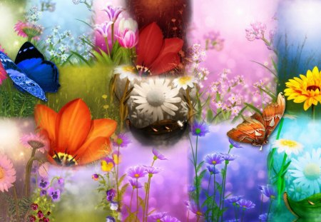 Spring Summer Sensation - wild flowers, fragrant, soft, butterflies, collage, floral, floers, daisies, bright, papillon, flowers