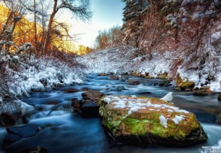 gorgeous stream in winter hdr - rocks, winter, stream, trees, hdr, cliff, rapid