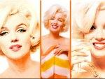 Marilyn Monroe-3 Parts