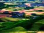 Colorful hills