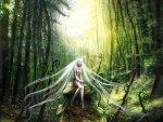 Spiritual Forest