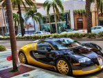 Balck And Yellow Veyron