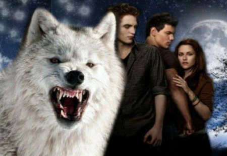 Twilight Wolf Movies Entertainment Background Wallpapers