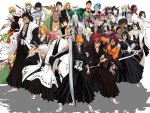 bleach herose