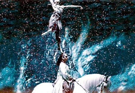Cavalia 2013 - australia, brisbane, show, Horses