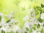 White Lilacs and Butterflies