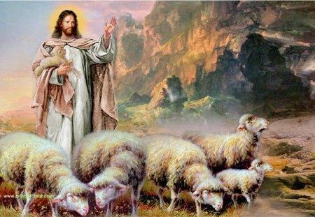 Jesus the good shepherd - lamb, sheep, god, christ, shepherd, jesus, bible, love