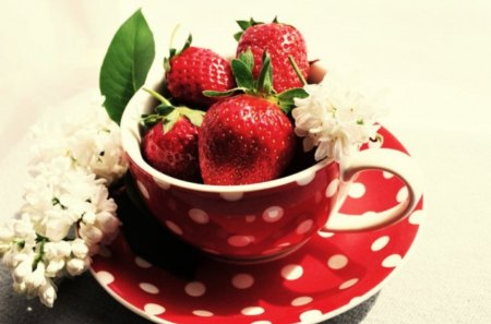 Happiness in a Cup - red, happiness, flowers, strawberries, cup