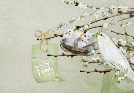 A New Family - flowers, family, birds, white, babies, pretty, wings, nest, blossoms, green, beautiful, cute
