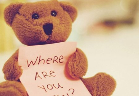 Left alone - alone, are, bear, you, left, doll, where