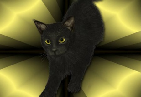 Black Kitty - abstract background, black cat