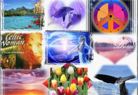 Collage wallpaper - celtic woman, dolphins, whale, angel, heart, flowers, peace, sunset