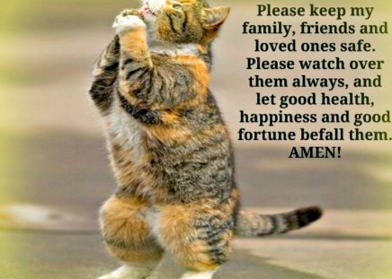Prayer quotes - Cats & Animals Background Wallpapers on ...