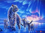 White Tiger Family