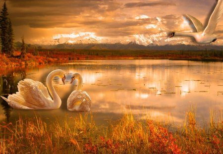 Romantic Nature Lakes Amp Nature Background Wallpapers On