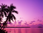 Beautiful Island Sunset