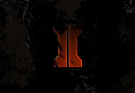 Black ops 2 wallpaper - Videogames, lol, blackops, epic, cool, wallpaper, COD, awesome, 2