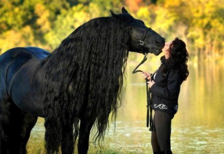 Handsome friend - black, beauty, horse, woman, friends