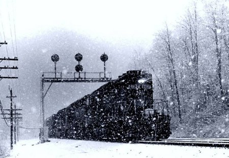 freight train in winter - train, snow, signals, tracks, winter