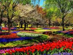 Colorful Garden Park