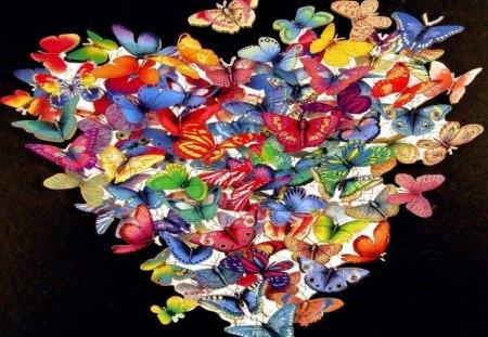 Butterfly Heart - butterflies, heart, on black