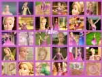 Fallon Barbie In The 12 Dancing Princesses