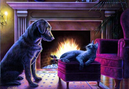 This is my Place - fire, home, cat, chimney, dog