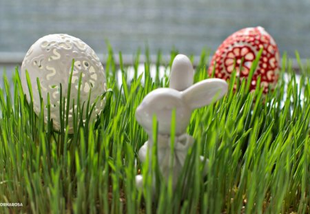 Pretty Decoration - Easter, special days, holidays, grass, eggs, bunny