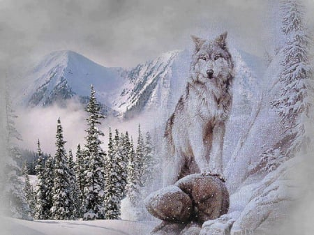 Rocky Mountain High - abstractfantasy, snow, wolf, trees, animals