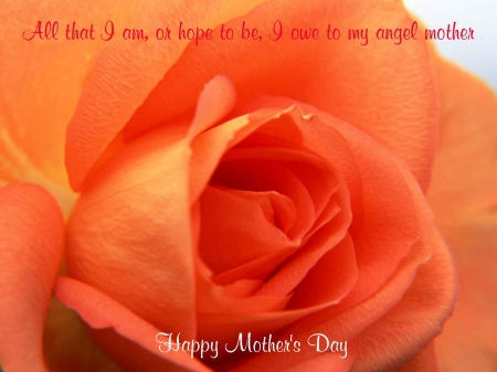 Mother's Day Gift - mom, mothers day gift, happy mothers day, mother, mothers day