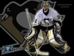 pittsburgh penguins wallpaper