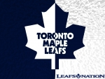 toronto maple leafs half white  leaf half blue leaf wallpaper